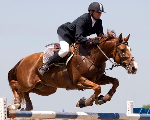 equitación en España