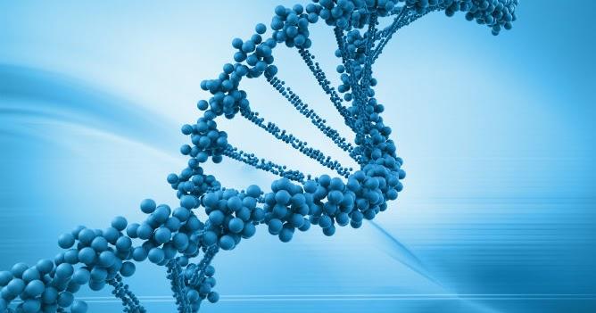 historia de la biologia molecular