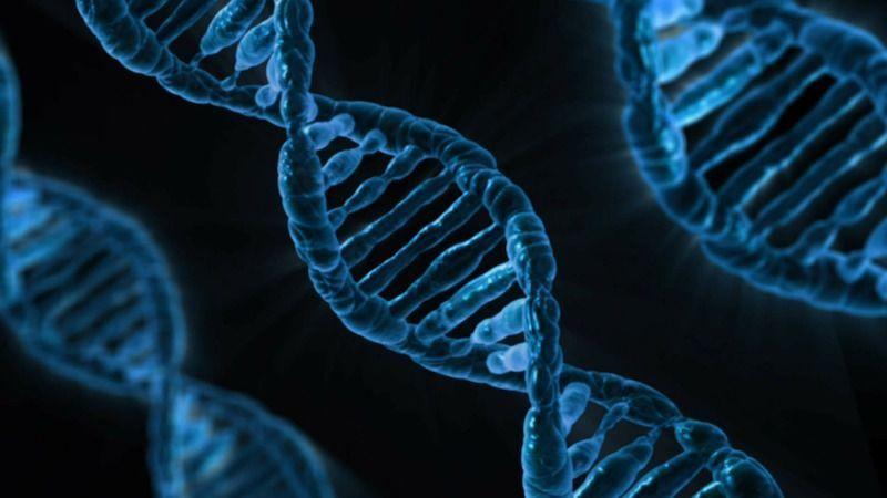 Historia de la biologia, origen