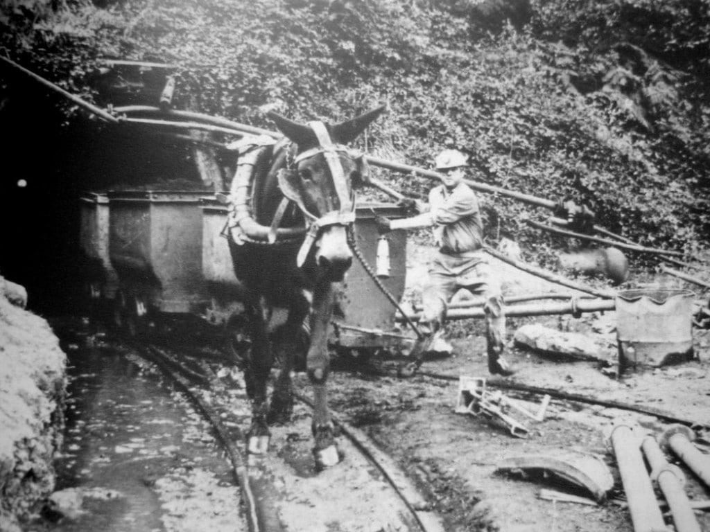 minería y la historia