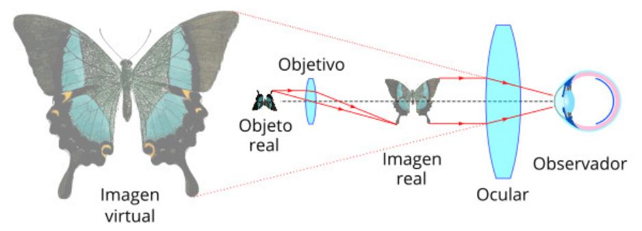 historia del microscopio funcionamiento