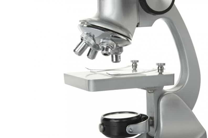 historia del microscopio compuesto