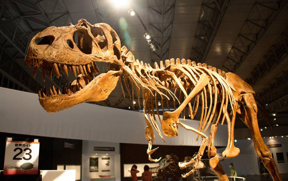 historia de dinosaurios