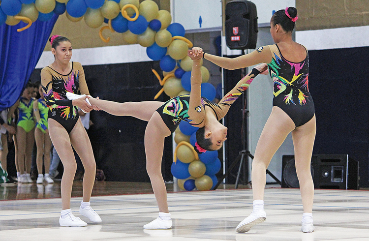 historia de la gimnasia