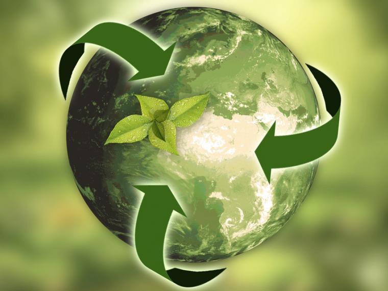 Historia de la ecología: desarrollo, reservas y todo lo que te interesa saber