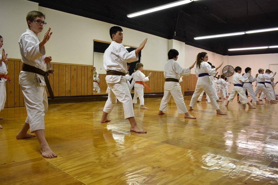 historia-del-karate-3
