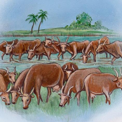 vacas gorda y flacas